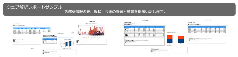 ウェブ解析レポートサンプル